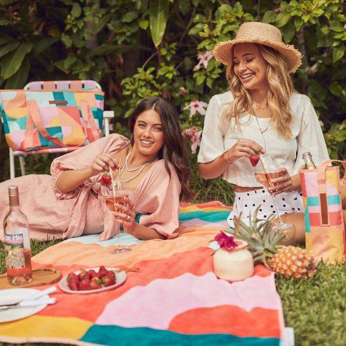 picnic-accessories